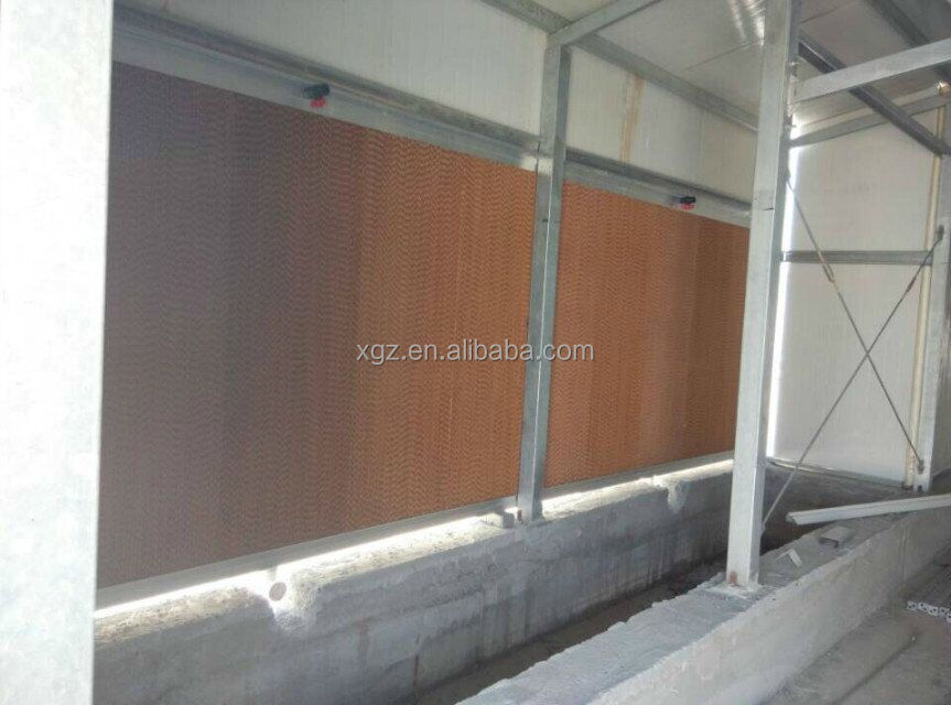 Modern design prefabricated chicken house sale in Qatar