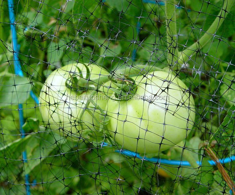 25mm 1 square mesh garden fruit cage pond bird black for Garden pool netting