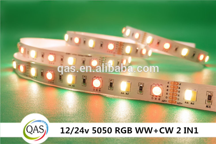 New product 24V 5 colors cw ww 2in 1 led flexible led strip light smd5050 RGB WW+CW 12v strip lights