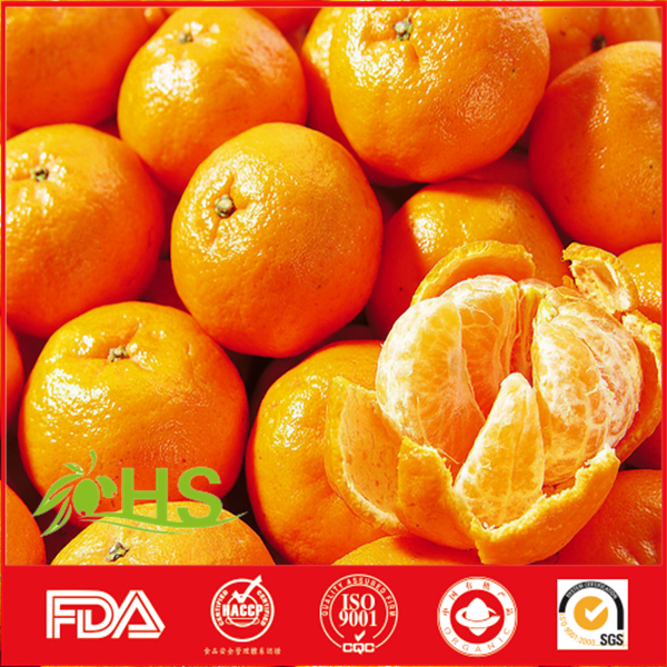 Original new green orange best price