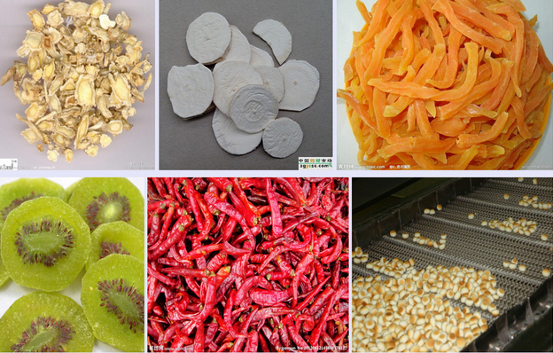 Elektrische gas lebensmittel trockner obst und gemüse trockner