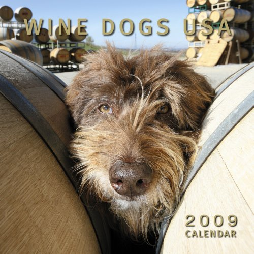 Wine Dogs USA 2009 Calendar