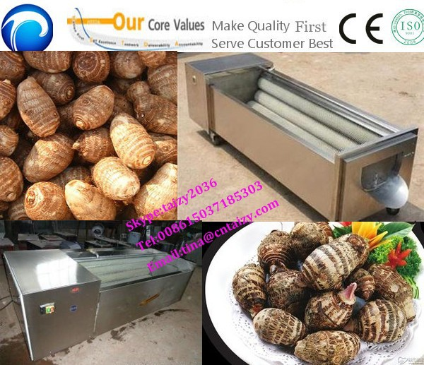 Good Quality Taro Peeling Machine | Taro Peeler Machine on Sale