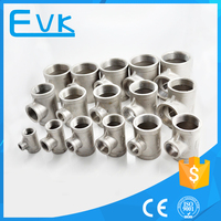 China Manufacturer Screwed Stainless Steel Pipe Fittings