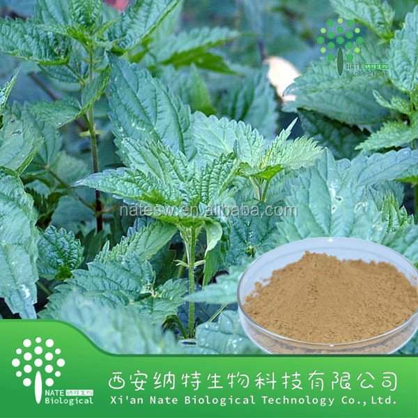 USP Standard High Quality Nettle root extract Beta Sitosterol,Nettle root powder extract,Beta Sitosterol powder