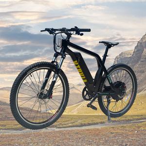 Long cycling range Ebike mountainbike 48V bicycle electric bike 1000w cheap  e mtb