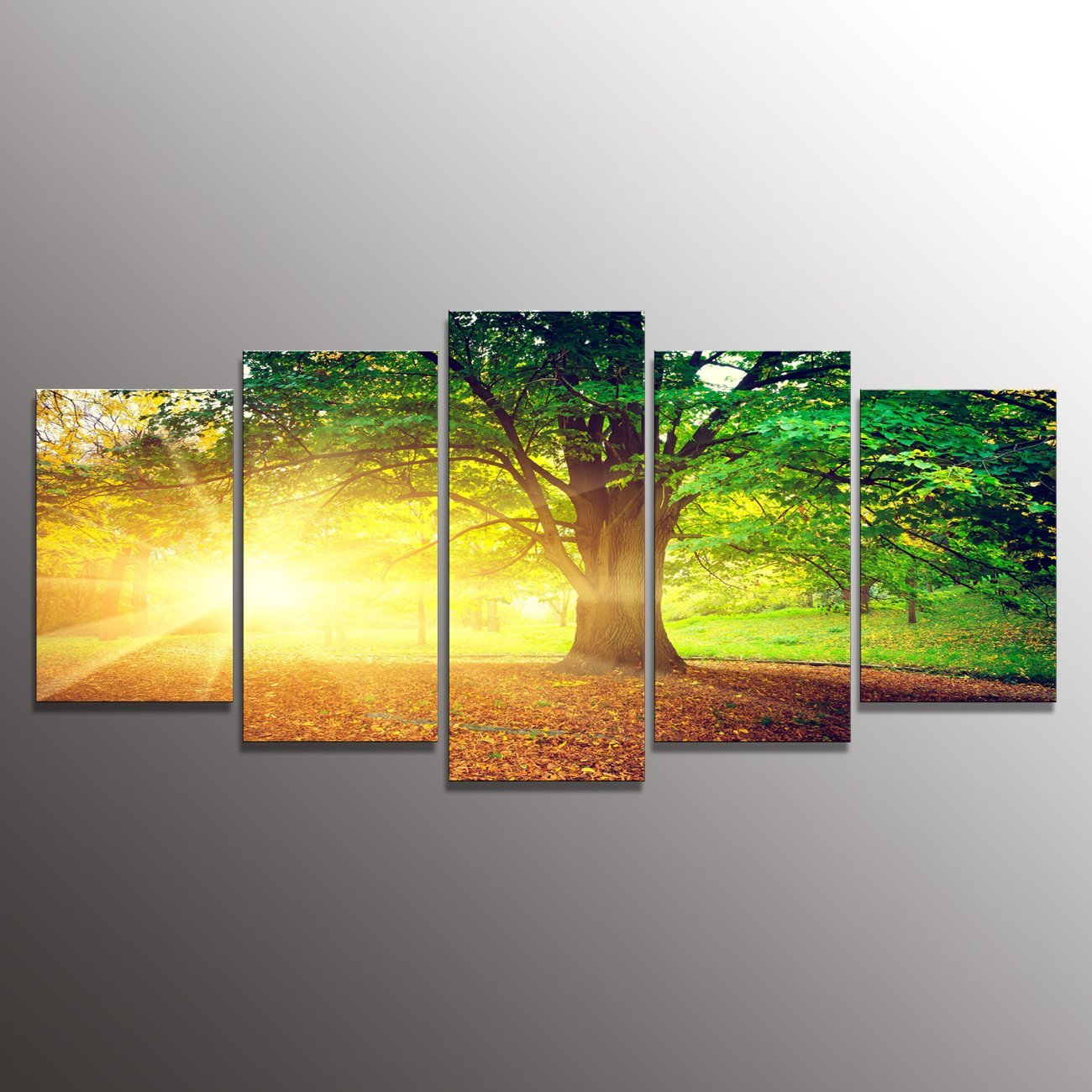 Formarkor Art Kx334 Canvas Print Green Forest Old Trees Sunshine Morning Forest Landscape Print On Canvas Giclee Artwork For Wall Decor Home Decor 5-piece