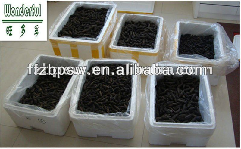 Best Price Chinese Sea Cucumber