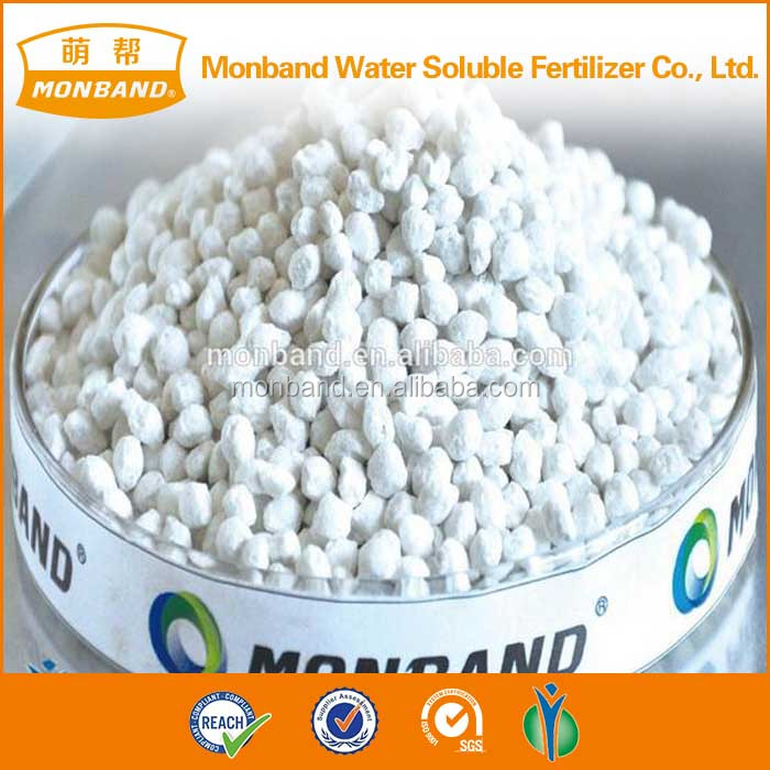Trade assurance chemical ammonium sulphate water soluble SGS/CIQ fertilizer AS for agriculture