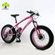 "Factory 26""* 4.9 inch Fat bicycle, Snow Bicicleta Fat Bike tire for selling,carbon fat beer bike frame with bottom price on sale"