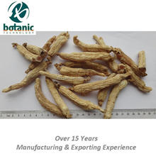 traditional and high quality ginseng root