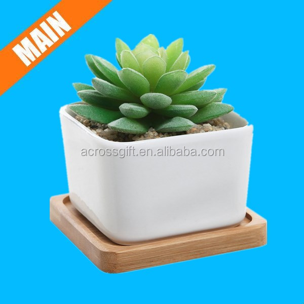 Small White Square Ceramic Succulent Plant Pot w/ Bamboo Draining Tray
