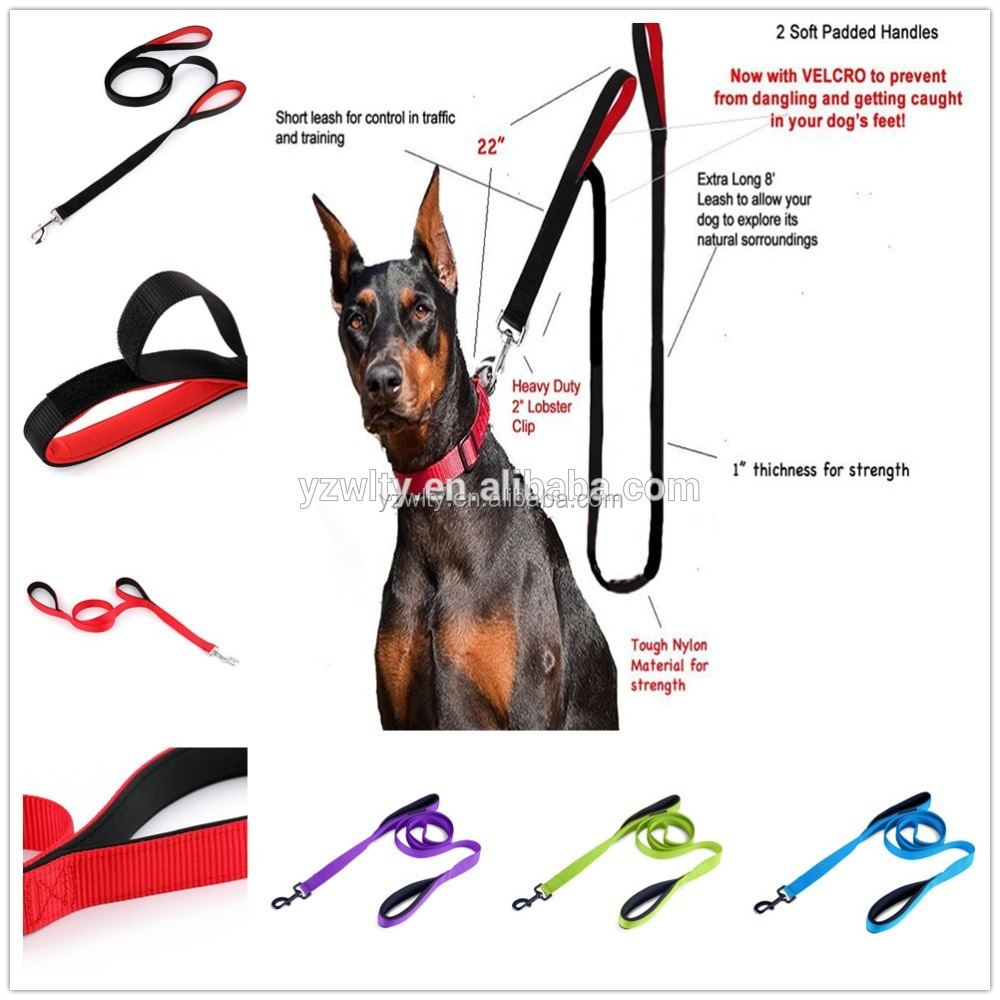 Manufacturers selling neoprene dog running leash for training dog