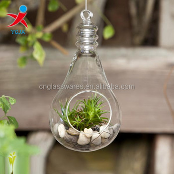 Hanging Glass Light Bulbs Shape Terrariums For Sale Bulb Vase