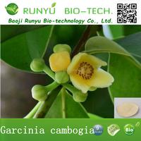 Organic Garcinia Cambogia Extract 80% Hydroxycitric Acid Weight Loss Medicine