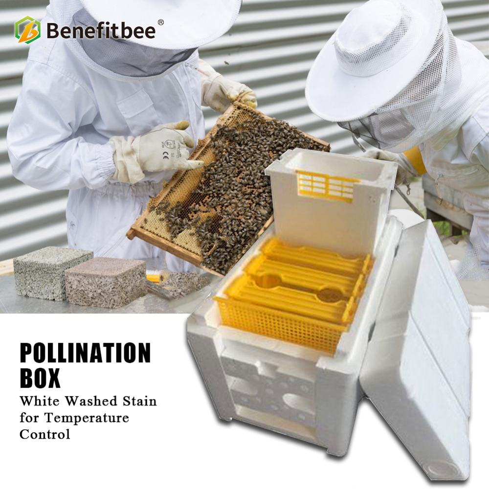 Plastic Honey Queen Bee Hives Nuc Box  Mini Mating Boxes