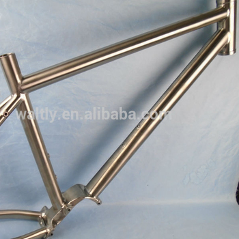 29er bicycle   titanium pinion gear box bike frame