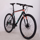 China Brand Flying Pigeon Carbon Frame Road Bike aluminum alloy rim material bicycle