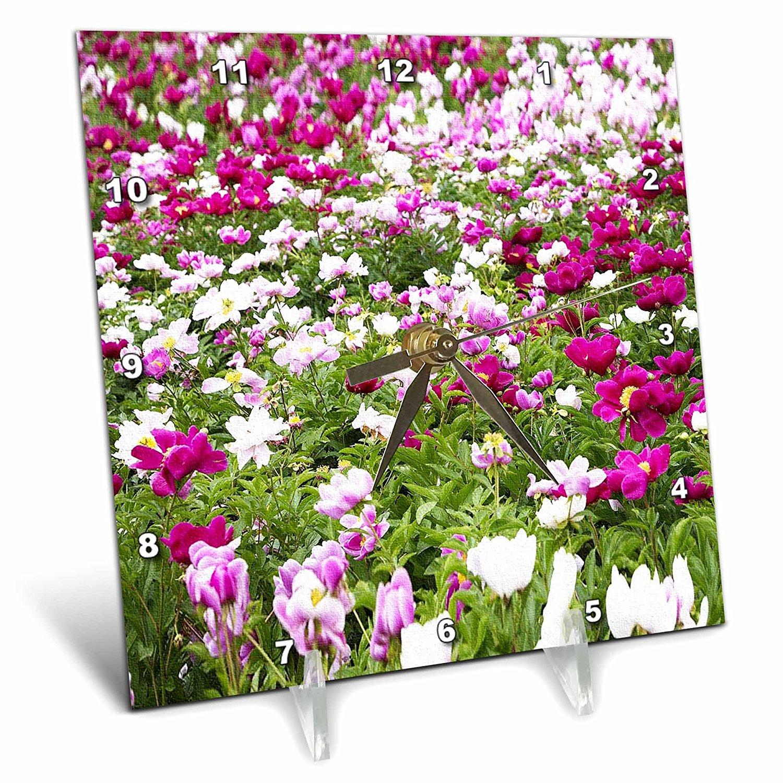 Buy Rinapiro Flowers Field Of Peonies Painting On Canvas Pink