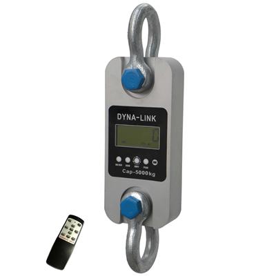 제조업체 DLR 5t dynamometers