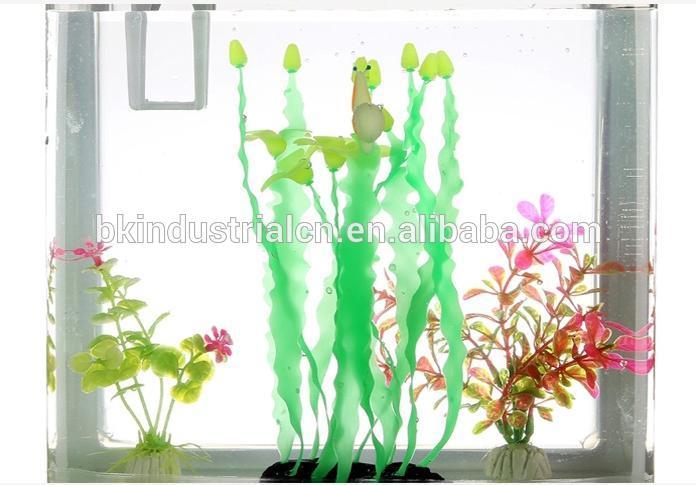 Dhaka Plastic Aquatic Plant Eucalyptus Tree Price