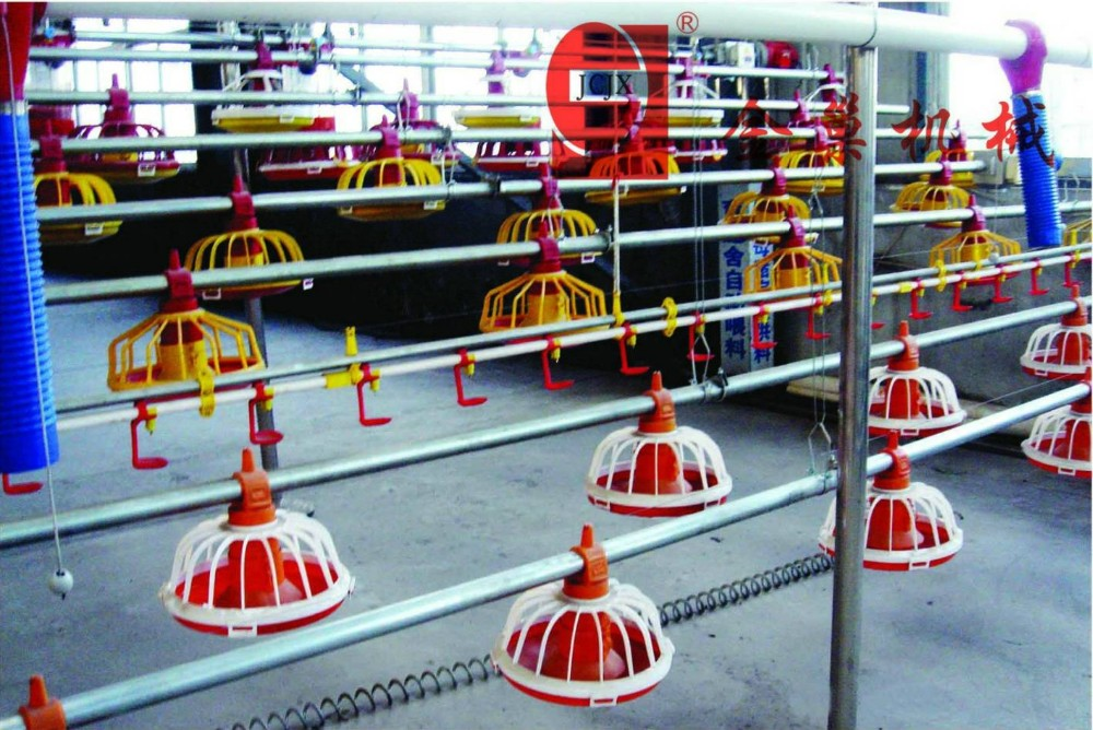 Broiler Feeding Pan system for Poultry Equipment Auger feeder in Brioler Farm
