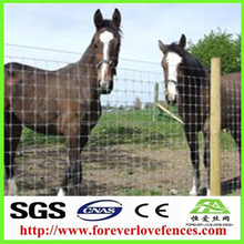 fixed knot joint hot dipped galvanized horse and sheep wire mesh fence