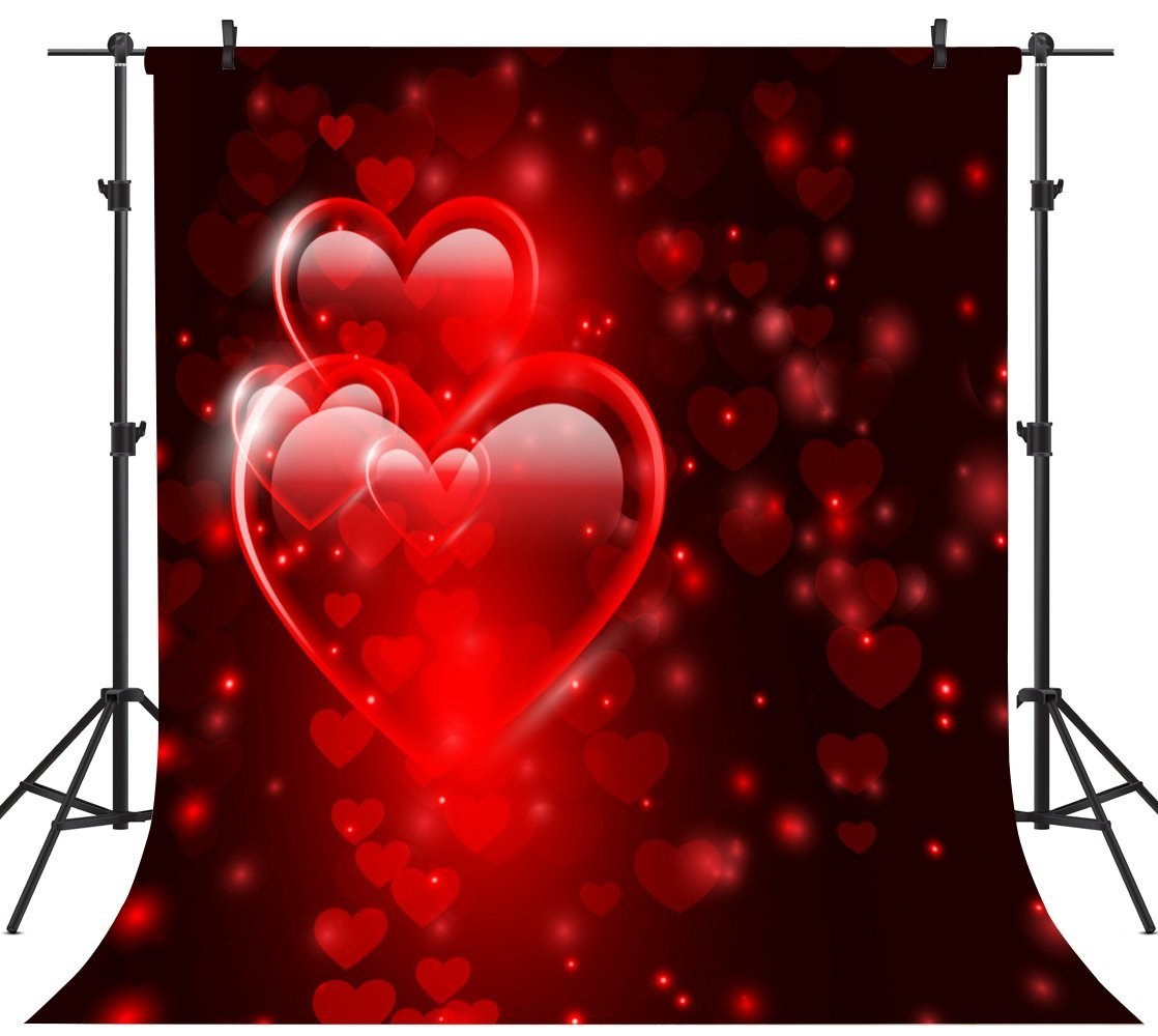 GoHeBe 10X10FT Seamless Valentines Day Theme Pictorial Cloth Customized Photography Backdrop Background Studio Prop VDD047C