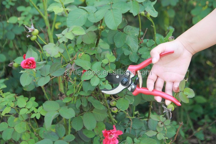 Professional Garden Tools High Carbon Steel Pruning Shear Garden ...