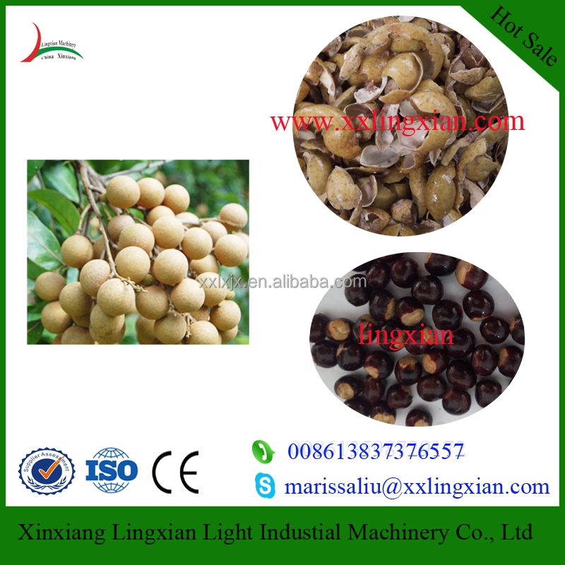 Well Performance Longan processing line with factory price , longan pitting machine for sale