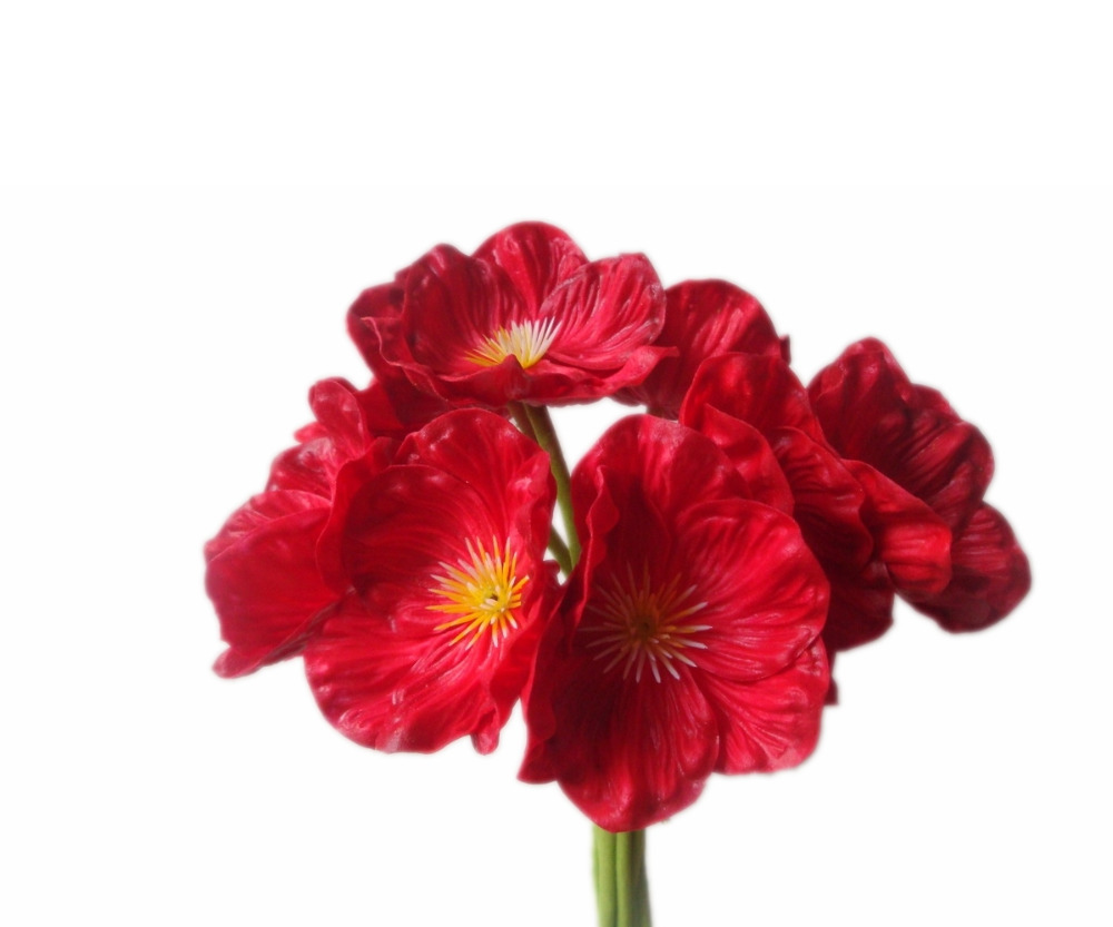 China Red Poppy Poppies China Red Poppy Poppies Manufacturers And