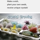 Wishing crystal growing kit science educational toys