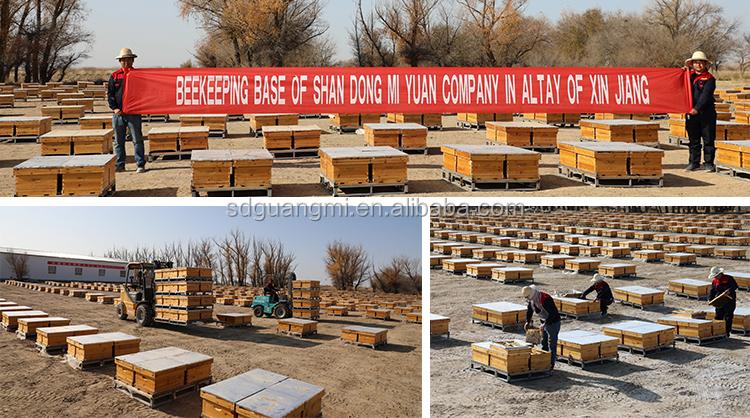 Prime miele di acacia vendita all'ingrosso miele delle api