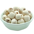 Dried Herbal Medicine White Lotus Flower Seed in High quality