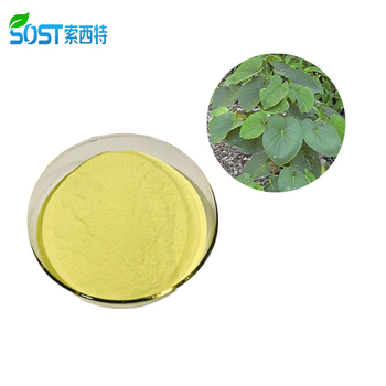 Free Sample Kava Root Extract Powder Kavalactone 70% For Anxiety