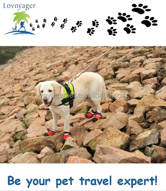 cheap rain boots waterproof pet boots for dog