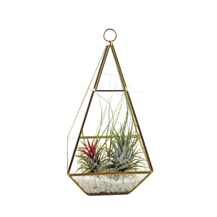 HOT Sell DIY geometric hanging glass plant terrarium wholesale for home decoration