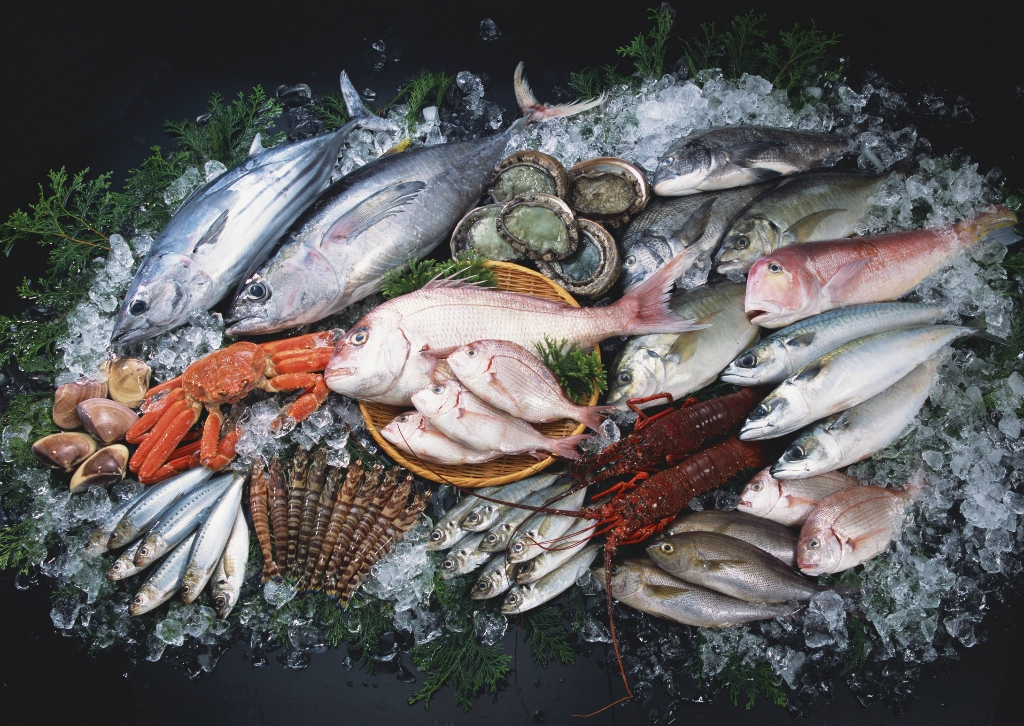 Shrimp Fish Meat quick freezing machine /spiral freezer/industrial blast freezer