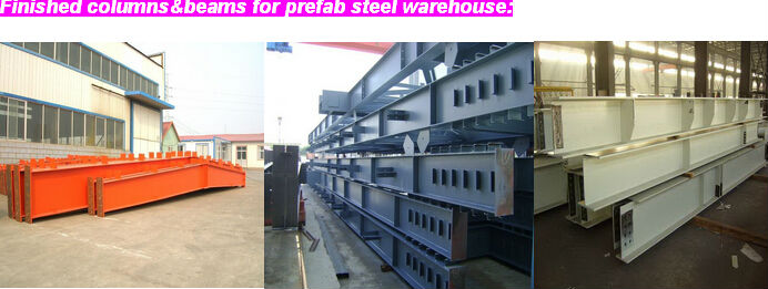 steel structure poultry control shed design and construction