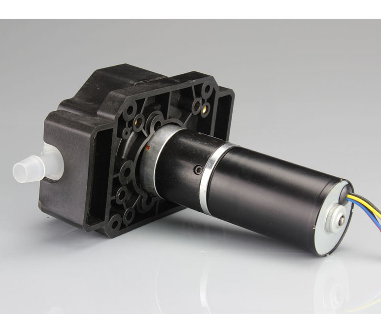 DC Gear Motor Easy Install Peristaltic Pump High Flow 24V for Beverage Vending