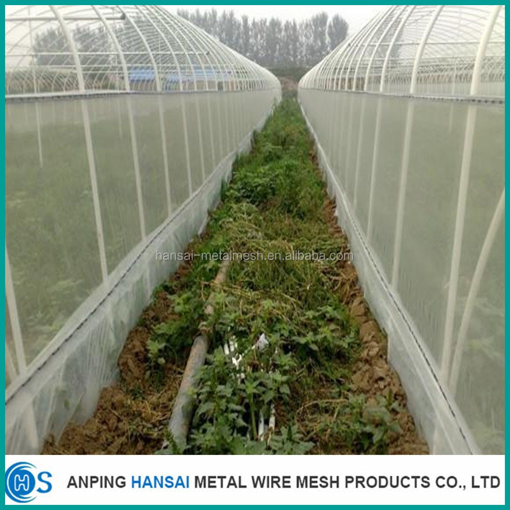 Mesh plastic agricultural anti insect net for