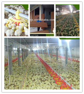 big discount chicken poultry farming equipment