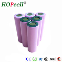 Large quantity in stock true capacity factory supply 18650 battery pack