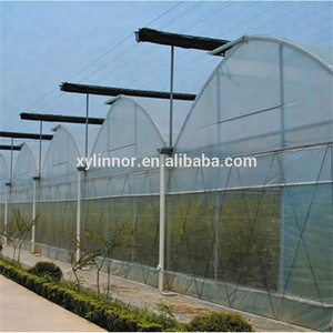 Plastic film Covering Tunnel Tomato Cheap Agricultural Greenhouse