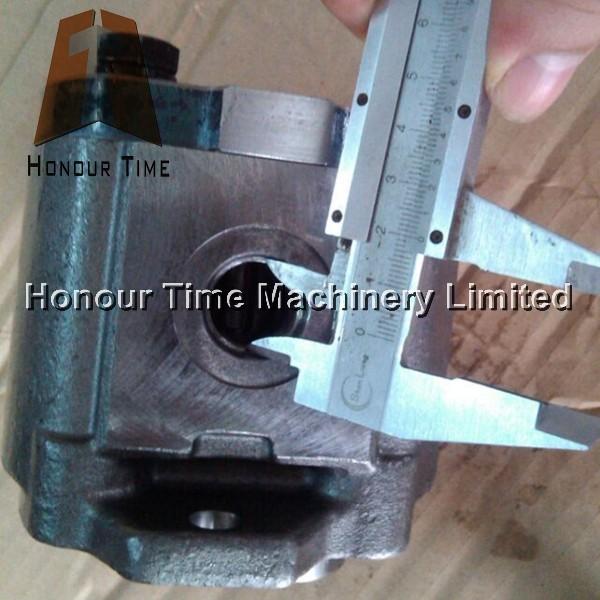 E70B A10VD43 Gear pump 4.jpg