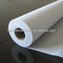 nonwoven fusible LDPE coating interlining