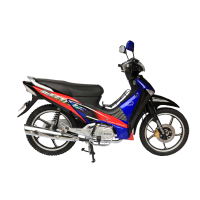 16 Years Chinese Factory Direct Sale High Quality 50cc 90cc 110cc 125cc moped