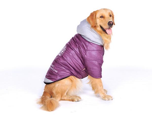 Dog overcoat
