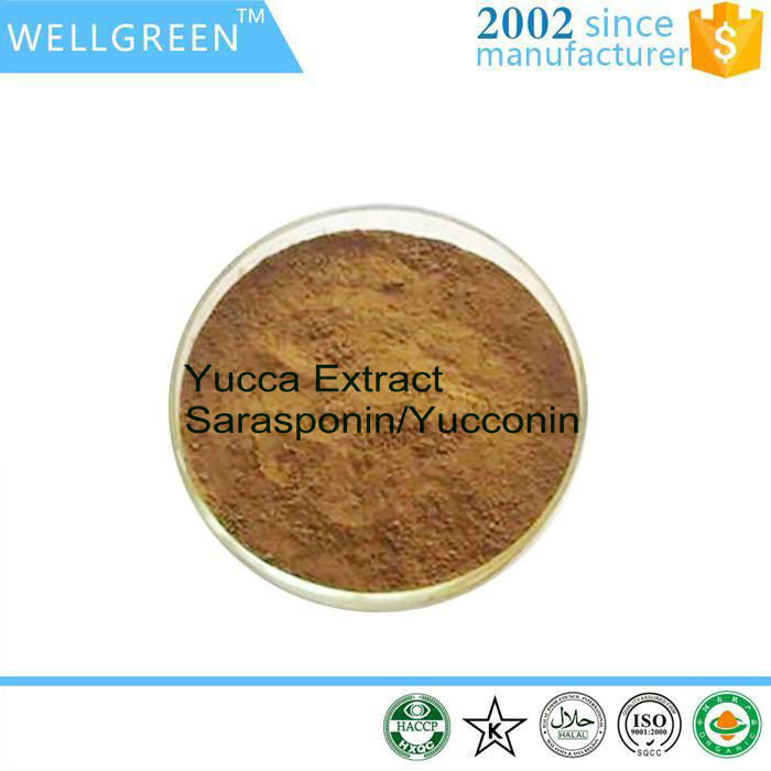 Natural Herbal Yucca Extract for Foaming and emulsification agent
