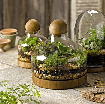 Garden Wholesale Vase Clear Glass Terrarium Plants With Wooden Base